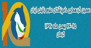 فراخوان مقاله دهمین کنگره علوم بالینی دامپزشکی، بهمن ۹۶، دانشگاه شهید باهنر کرمان